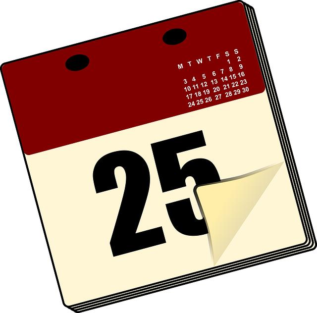 CAMSER - Programma-2015
